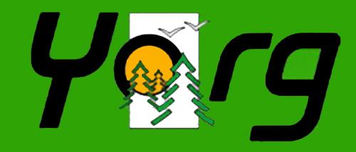 logo yorg